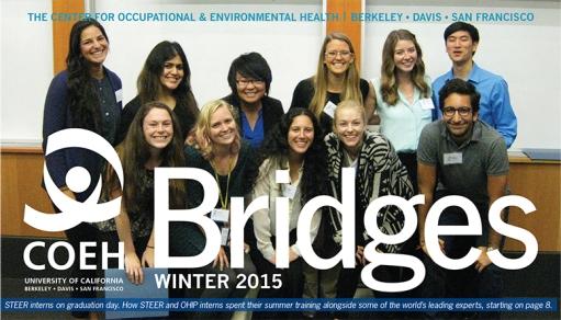 BridgesNewsletterWT15