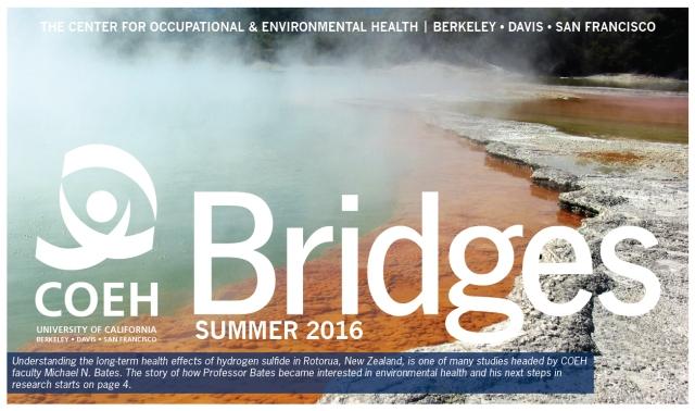 BridgesCoverSummer2016