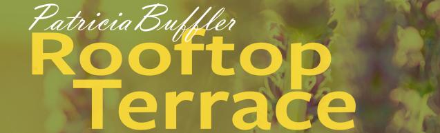 pat-buffler_rooftopterrace_9-22-1